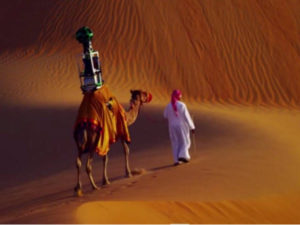 paralysis treatment by camel riding